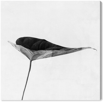 Oliver Gal Single Leaf Black And White Canvas Art By The Artist Co.