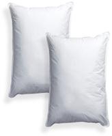 PermaLoft Pillows (Set of 2)
