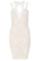 Quiz Cream Lace Bodycon Dress