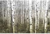 Parvez Taj Aspen Highlands 60-Inch x 40-Inch Canvas Wall Art