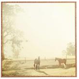 DENY Designs Morning Horses by Happee Monkee (Framed)