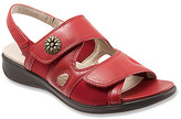 SoftWalk Women's Tanglewood