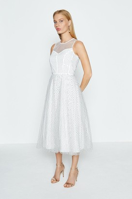 Coast Sleeveless PolkaDot Full Skirted Mesh Dress