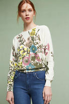 Plenty by Tracy Reese Lissie Floral Pullover