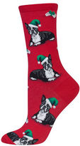 Hot Sox Boston Terrier Christmas Socks