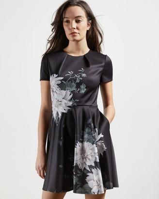 Ted Baker Clove Printed Skater Dress