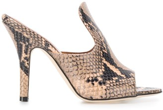 Paris Texas Snakeskin Effect 105mm Heel Mules