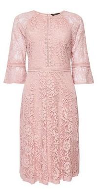 Dorothy Perkins Womens Blush Tilly Sleeve Midi Dress