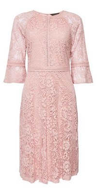 Dorothy Perkins Womens Blush Tilly Sleeve Midi Dress