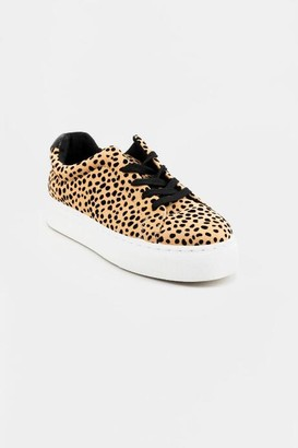 Quipid Lace Up Leopard Sneaker - Leopard