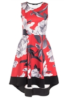 Quiz Red and Grey Floral Print Dip Hem Dress