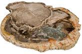 Petrified Wood Cheese Trays