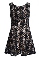 Quiz Black And Nude Crochet Pearl Skater Dress