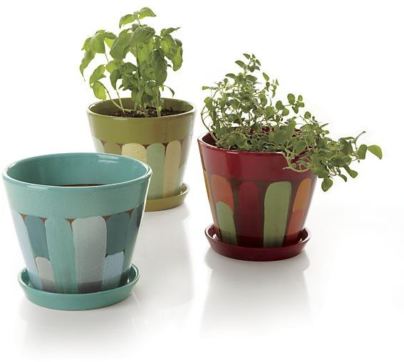 Crate & Barrel Jonna Planters