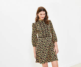 Oasis Ditsy Floral Skater Dress