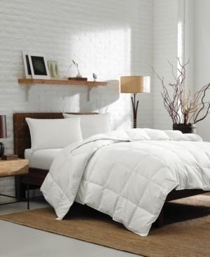 Eddie Bauer Lightweight Oversized Queen Down Comforter