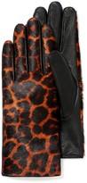 J.Mclaughlin Camilla Leopard Glove