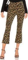 Frame Cheetah Flare