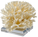 Mapleton Drive Lettuce Coral on Stand with Seahorse