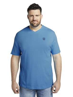 TOM TAILOR Men+ Men's Basic V-Neck T-Shirt