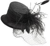 Arden B Feather Veil Top Hat