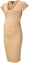 Isabella Oliver Balfour Maternity Dress