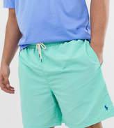 Polo Ralph Lauren Big & Tall Traveler player logo swim shorts in green
