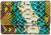 Mundi Amsterdam Snake Indexer Wallet
