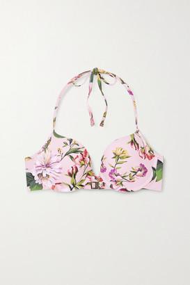 Dolce & Gabbana Floral-print Underwired Halterneck Bikini Top - Pink