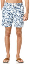 Cubavera Solid Full Elastic Floral Print Swim Short
