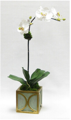 Bougainvillea Two Spike Artificial Orchid In Mini Wooden Square Container