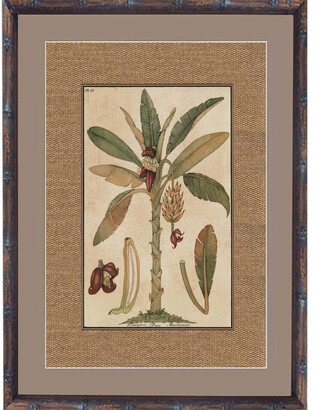 Casbah Design Tropical Palm Print Ii