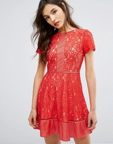 Oasis Lace Skater Dress