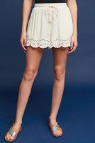 Astr Solana Shorts