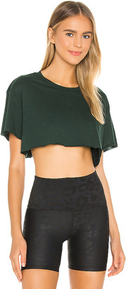 Alo Cropped Short Sleeve Top