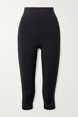 Eres Cropped Calais Lace-trimmed Stretch Leggings - Black