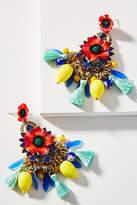 Elizabeth Cole Zaya Drop Earrings
