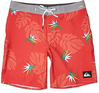 Quiksilver Highline Paradise 19 (Hibiscus) Men's Swimwear