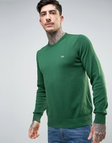 Lacoste Crew Knit Sweater Croc Logo in Green