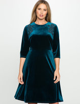 ELOQUII Plus Size Velvet Embroidered Dress
