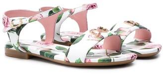 Dolce & Gabbana Tropical Rose-Print Sandals