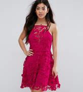 New Look Petite Premium Lace Trim Skater Dress