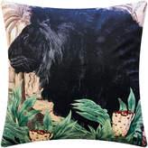 Fly London Vanilla Little Lion Velvet Cushion - 50x50cm