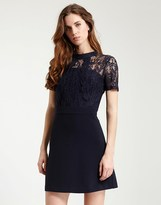 Morgan Lace Dress
