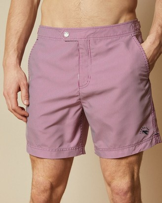 Ted Baker Formal Stripe Swim Shorts