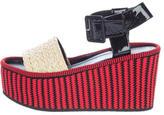 Celine Raphia Wedge Sandals