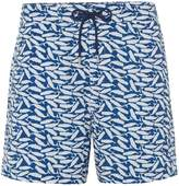 Linea Men's Whale Print Swim Short