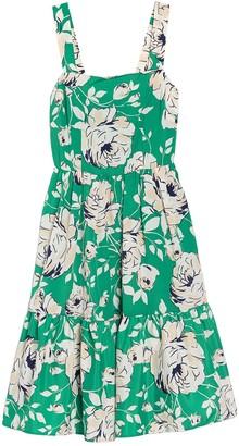 Brinker & Eliza Floral Sleeveless A-Line Flounce Dress