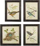 OKA Nesting Birds Framed Prints, Set of Four
