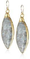 Devon Leigh Blue Kyanite in 24K Gold Foil Earrings